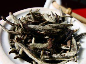 valkoinen tee, vihreä tee, terveysvaikutukset