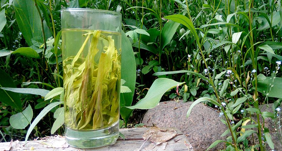 Tai Ping Hou Kui on ainutlaatuinen kukkainen ja vehreä kiinalainen vihreä tee, jonka lehdet ovat erittäin pitkiä. Tilaa ja maista itse!