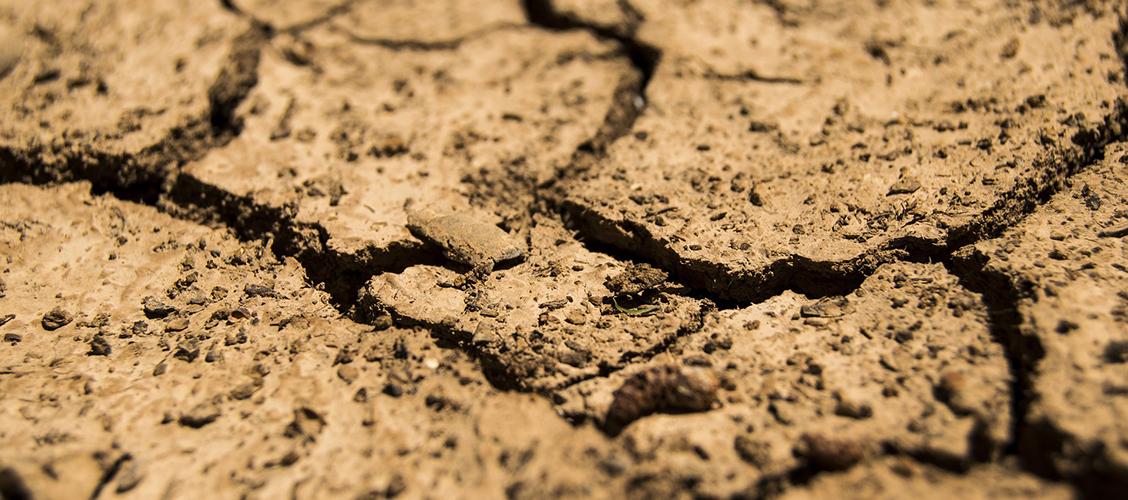 Maaperän eroosio ja köyhtyminen on yksi teen laatuun eniten vaikuttavista tekijöistä.